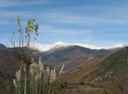 view of Canigou